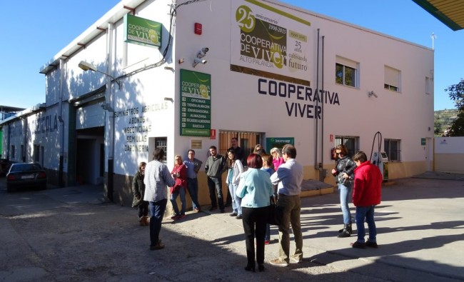 Agricultural excursion to Viver: Dive into the oil culture
