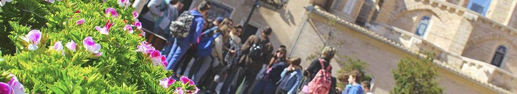 Imagen de la portada de Escolares y didáctica