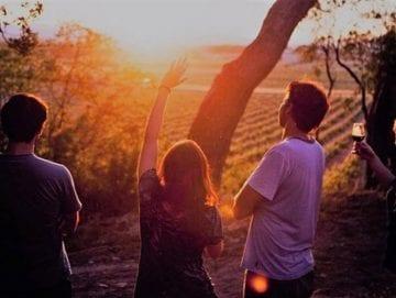 """Excursión """"Cata y Estrellas"""" - Requena - Ruta del Vino"""