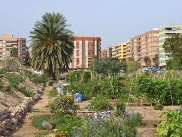 Benimaclet Pueblo y Barrio - Ruta guiada - Valencia Turiart - Paseos culturales